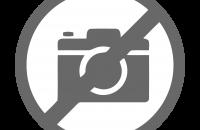 Лого serviceorg.spb.ru